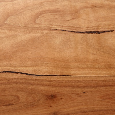 blackbutt timber blackbutt grain