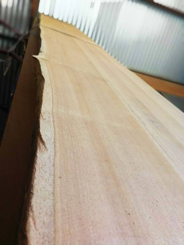 blackbutt slabs blackbutt benchtop blackbutt vanity blackbutt tabletop blackbutt hall stand blackbutt basin